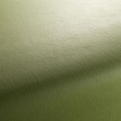 Ткань JAB GAUCHO VOL. 2 артикул 1-1311 цвет 030